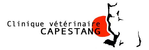 Clinique Vétérinaire Capestang